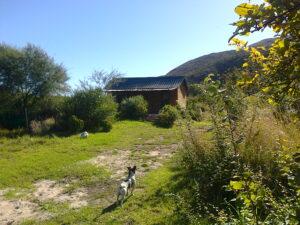 Aloe Cottage setting