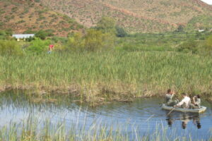 fishing on dam