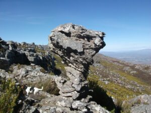 Weathered Rock on top of our mountain