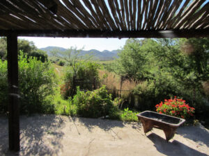Aloe Cottage view from stoep